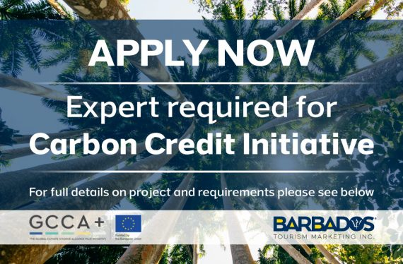 Expert for Carbon Credit Initiative – Short-Term Project (40 working days)